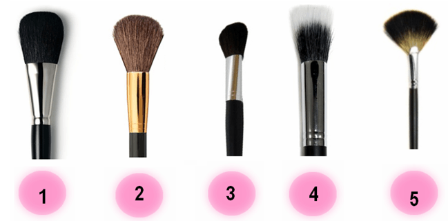 Face makeup brushes
