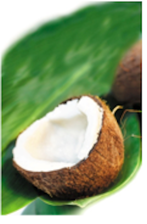Coconut Health and Beauty benefits of Coconut Oil