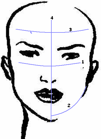 determine face shape
