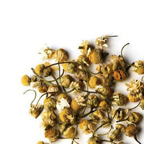 chamomile-flowers-tea