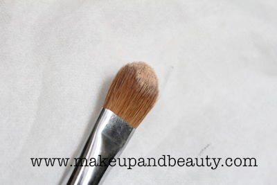 powder on flat brush
