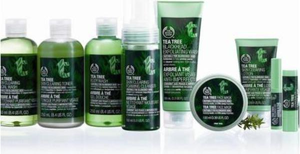 the body shop range