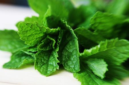 mint Home Remedies for Menstrual Cramps