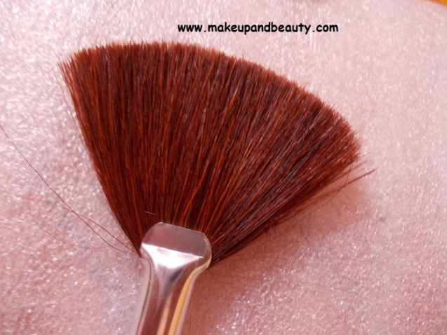 Amuse Fan brush