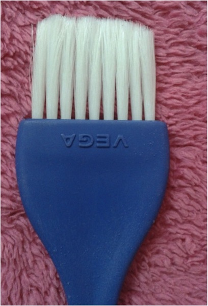 vega bleach brush