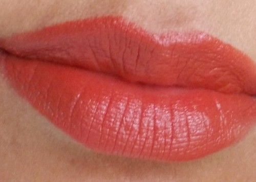 chambor rouge plump+ lipstick 701 lip swatch3