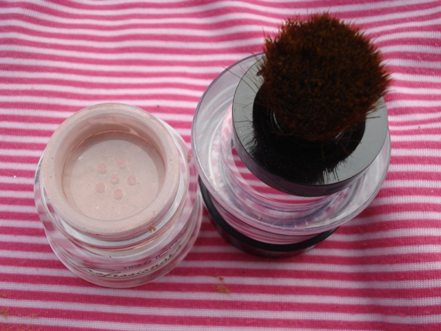 tips & toes pure mineral makeup blush on 5
