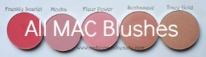 All MAC Blushes