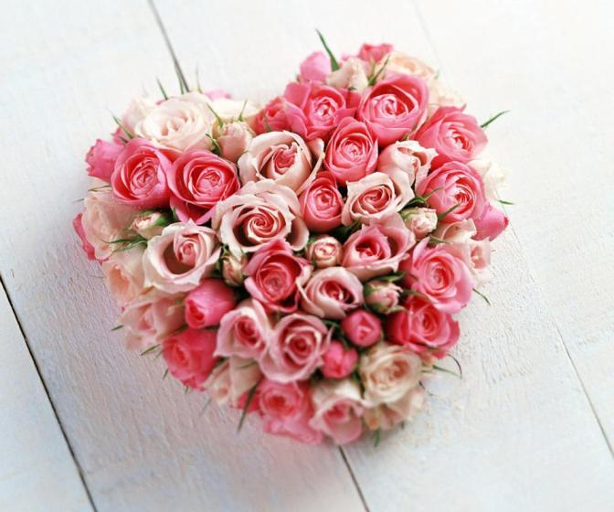 pink-roses-heart