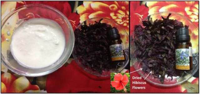 Hibiscus-Hair-Mask2