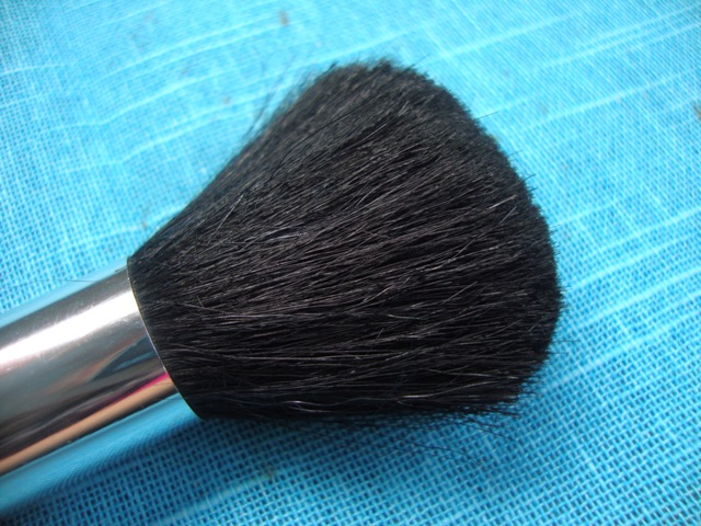 Superdrug Bronzing Brush  (5)