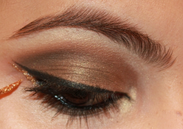 smoky brown eyes (2)