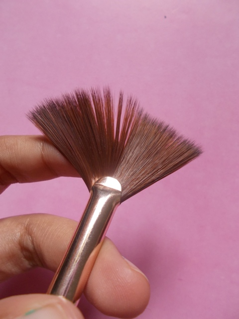 Audrey's Fan Brush (7)