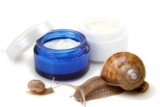 Snail Mucus Used In Creams and Cosmetics