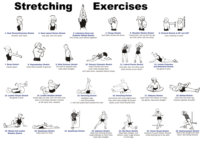 Stretching Exercises : Stretching exercises can help you in