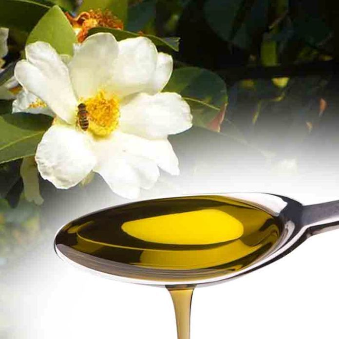 Natural Oils That Can Protect Your Hair From Heat Damage
