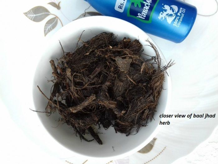 diy-baal-jhad-herb-infused-coconut-oil-for-hair-growth-step-2