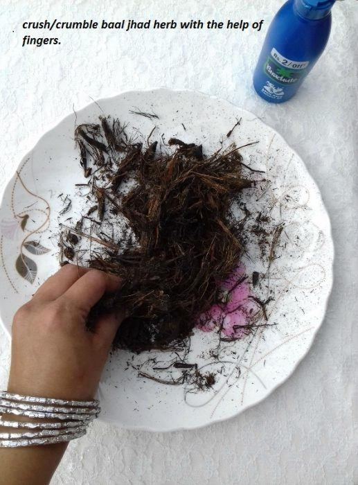 diy-baal-jhad-herb-infused-coconut-oil-for-hair-growth-step-3